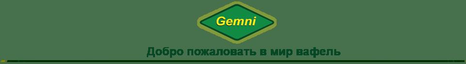 GEMNI
