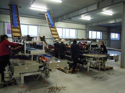 Столы для ручной упаковки Elisam