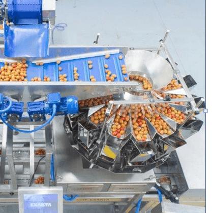 Линия упаковки помидоров Черри EXAKTAPACK