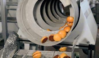 Линия по производству пряников 9