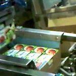 Машина для упаковки в коробки (2)